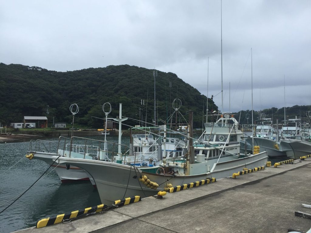 Hunting boats back in harbor, dolphins swim free! Photo: DolphinProject.com