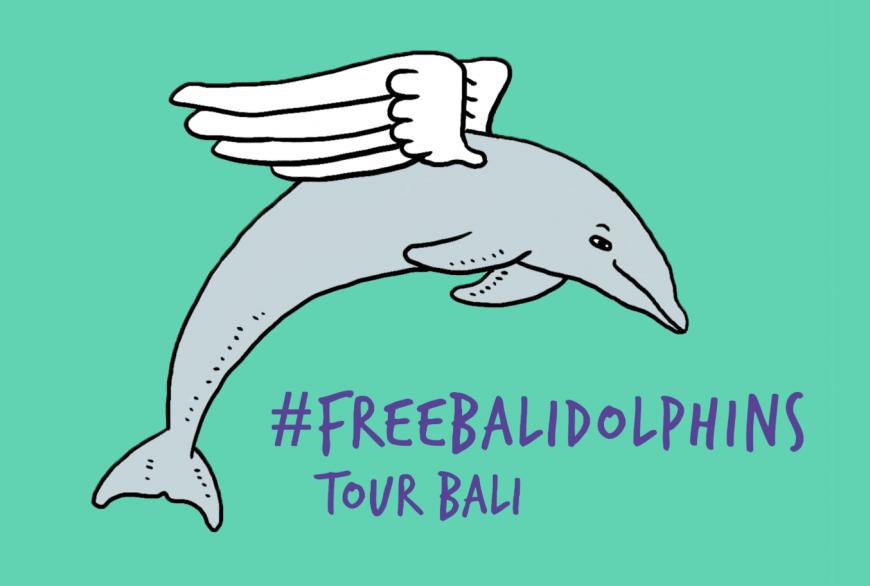 #FreeBaliDolphins Tour Bali