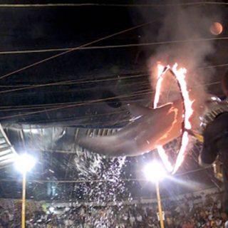 Traveling circus, Bali, Indonesia.