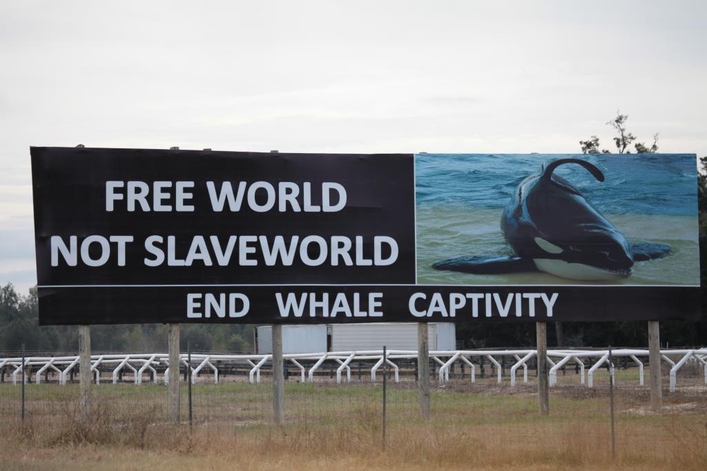 Free World not SeaWorld!