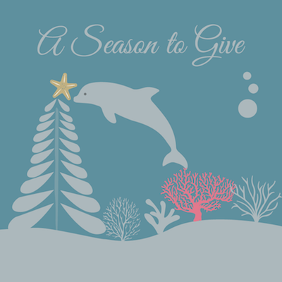 Dolphin Project Holiday Donation