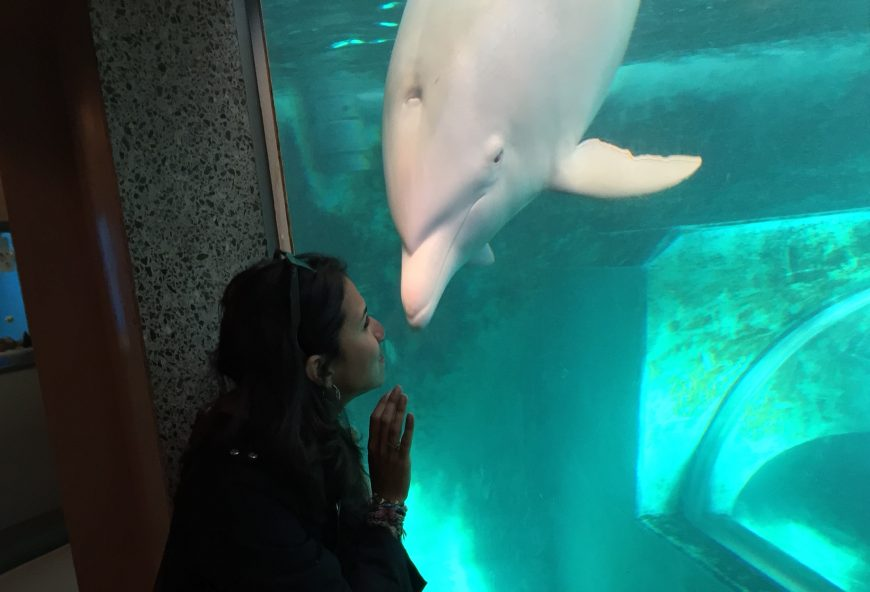 Karla Sanjur and Angel, Taiji Whale Museum