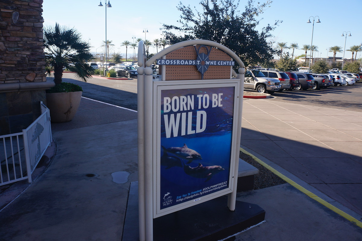 Anti-captivity billboards on display at Scottsdale malls.