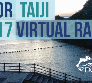 Dolphin Project Virtual Race 2017 Taiji