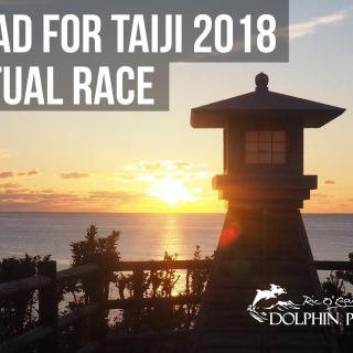 Tread for Taiji 2018 Dolphin Project Virtual Race Fundraiser