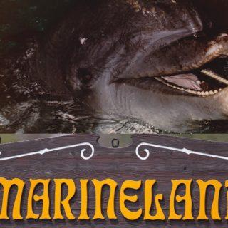 Duke; Marineland Canada