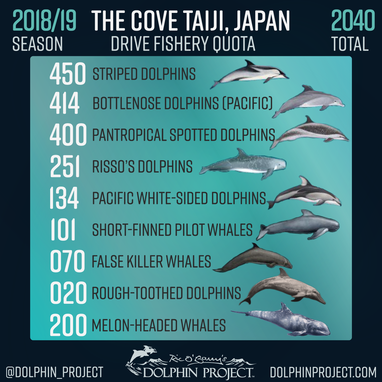 2018 19 Taiji Drive Hunt Season Quota Cove Japan