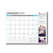 2019 Dolphin Project Calendar, January
