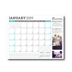 2019 Dolphin Project Calendar, January