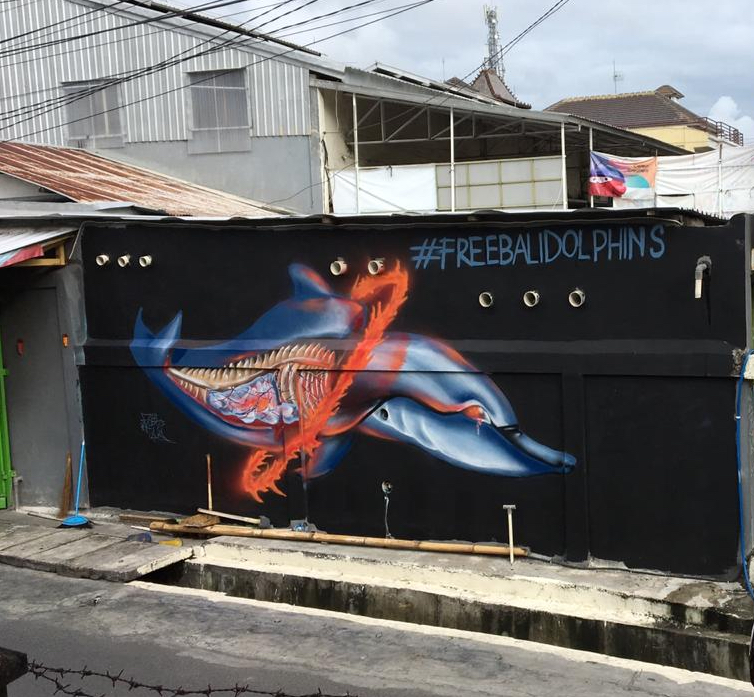 Colorful street art in Bali highlights the plight of dolphin captivity.