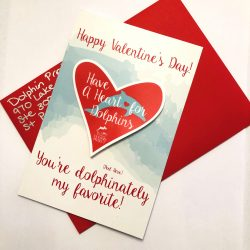 Dolphin Project Valentine1