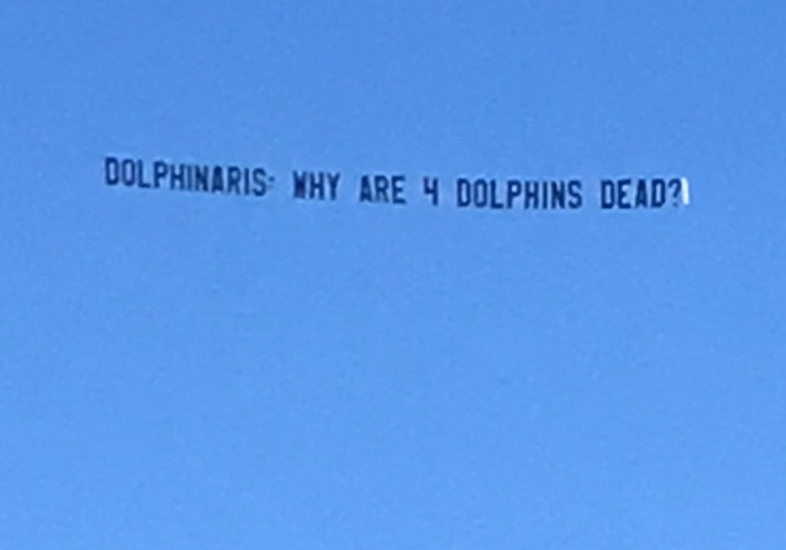 Dolphin Project-sponsored plane flying with huge banner, updated to reflect the total number of dolphins dead to four.