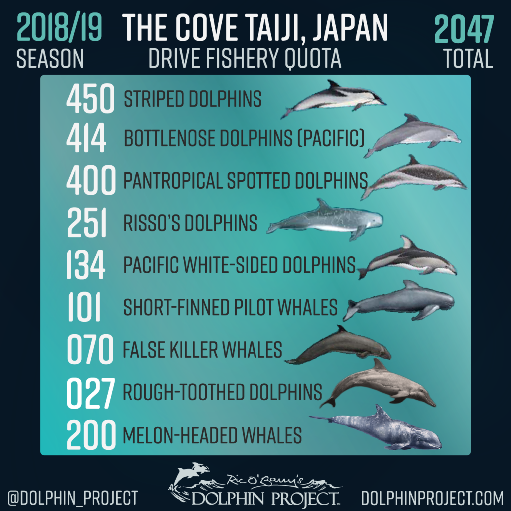Revised 2018/19 Drive Fisheries Quota, Taiji, Japan