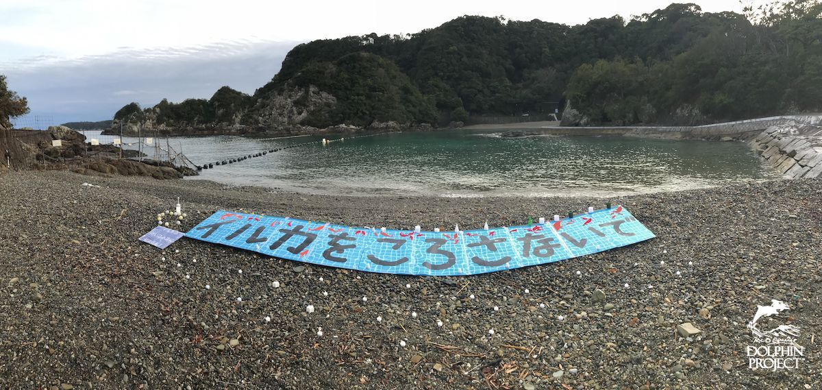 Japanese activists lay a banner across the beach: STOP KILLING DOLPHINS! Taiji, Japan.