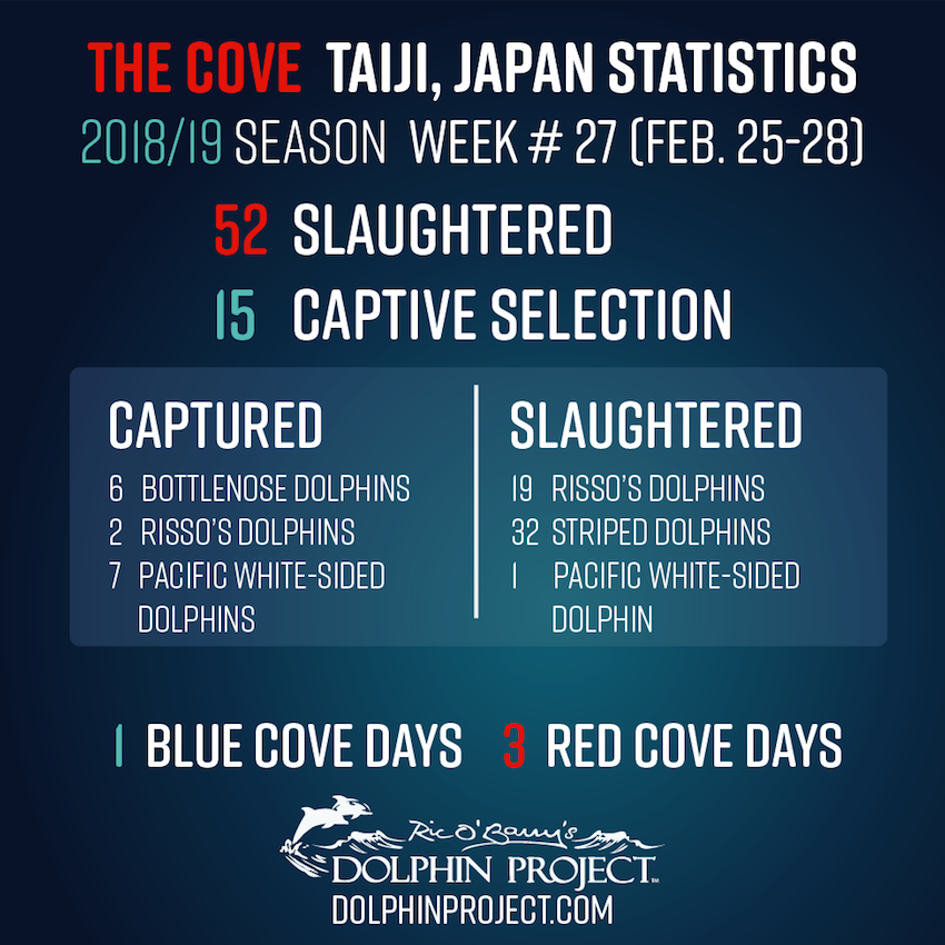 2018-19 Taiji Weekly Updates - Week #27 FINAL