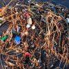 Plastic washes ashore after a storm, Ocean Beach, San Francisco