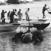 Orca capture in 1997
