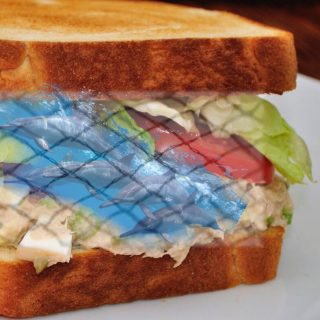 Did dolphins die for your tuna sandwich?