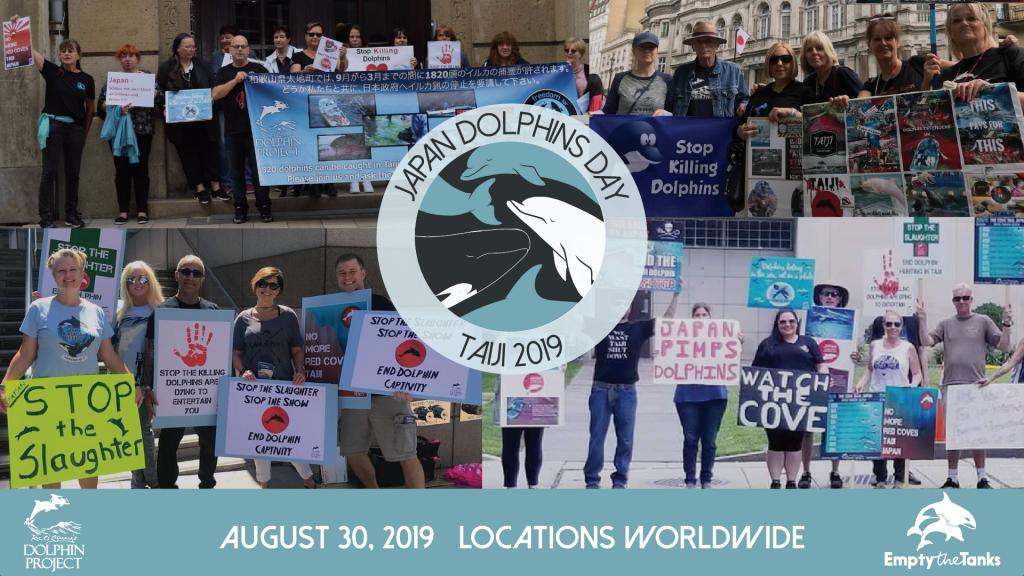 Japan Dolphins Day 2019 Taiji Slaughter Awareness