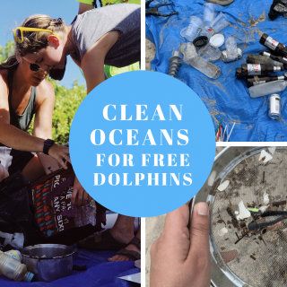 Global beach clean up