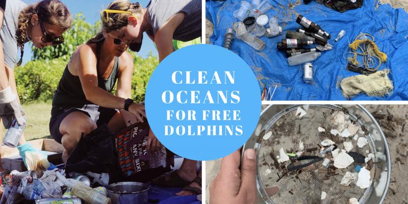Global beach clean up