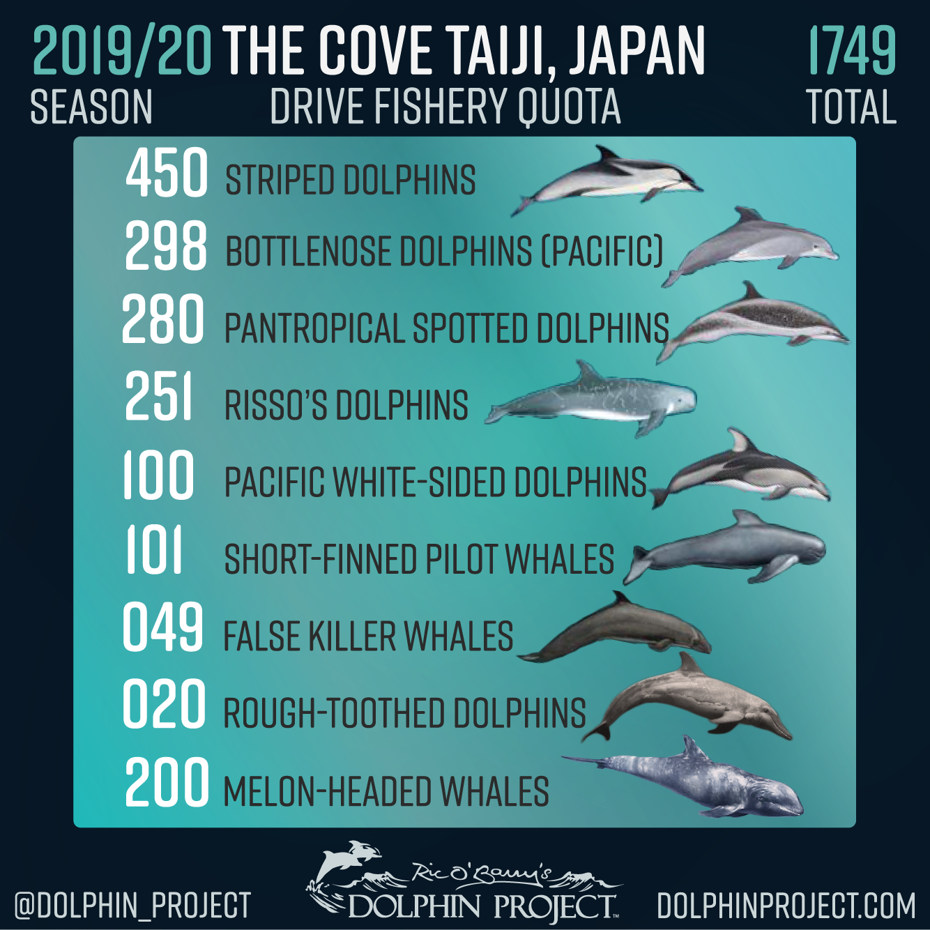 2019/20 Drive Fisheries Quota, Taiji, Japan