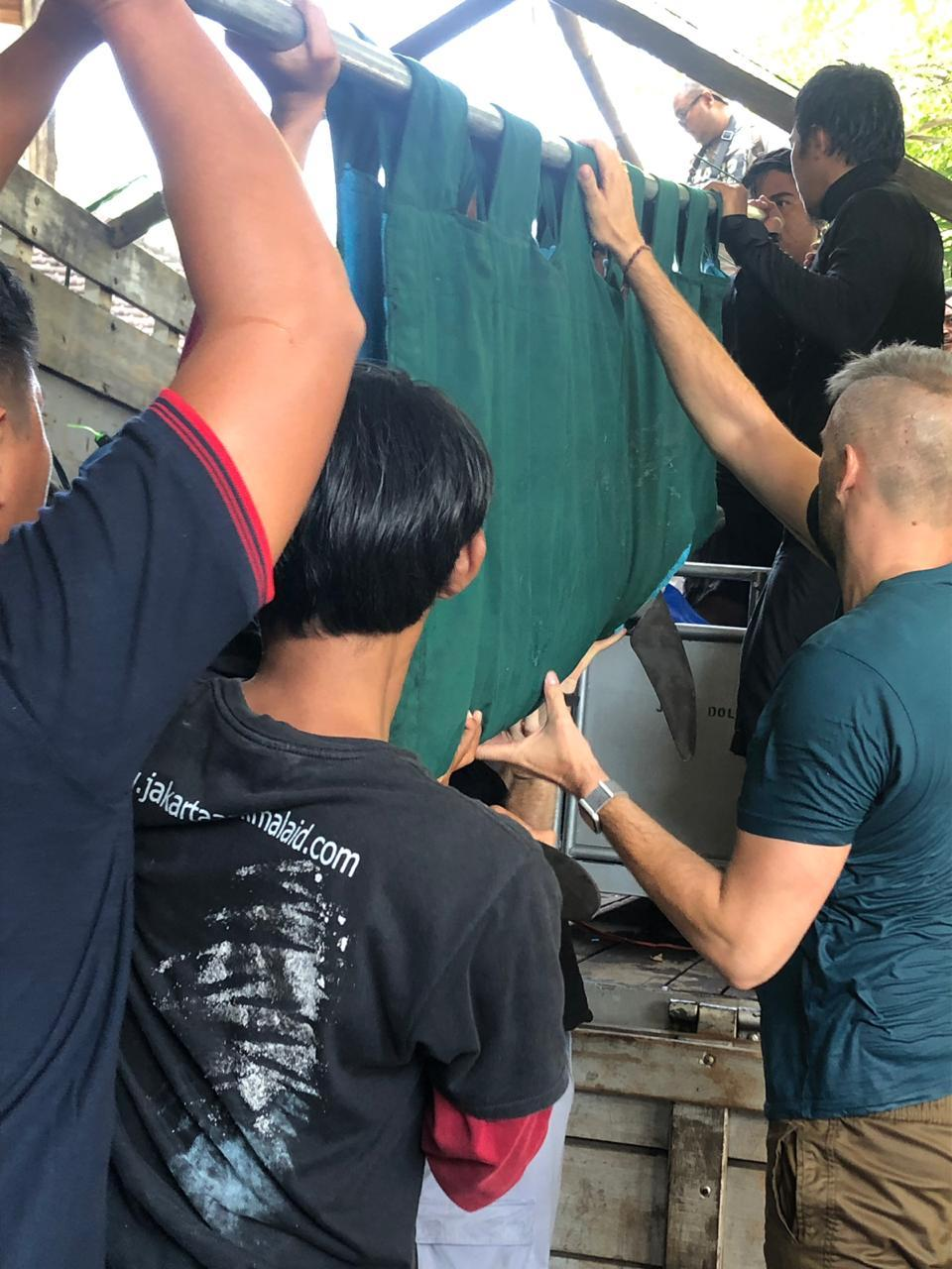 Evacuated dolphins loaded into transport boxes, Bali, Indonesia