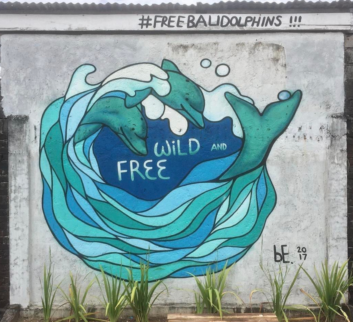 Anti-captivity graffiti campaign, Bali, Indonesia