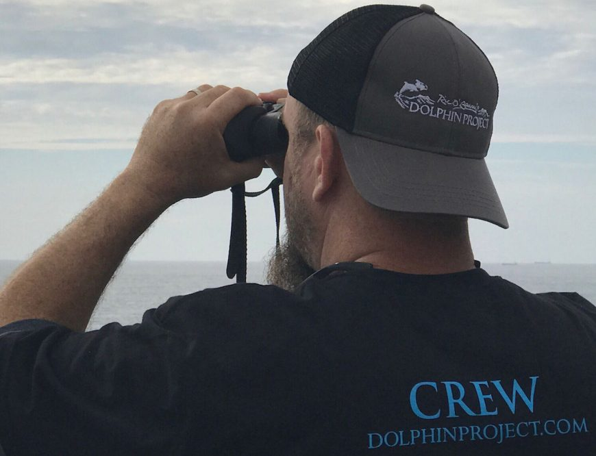 Dolphin Project Cove Monitor scans the horizon for hunting boats, Taiji, Japan.