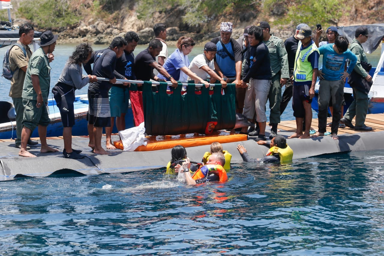 Dewa is placed in ocean water for the first time since his capture, Bali, Indonesia.