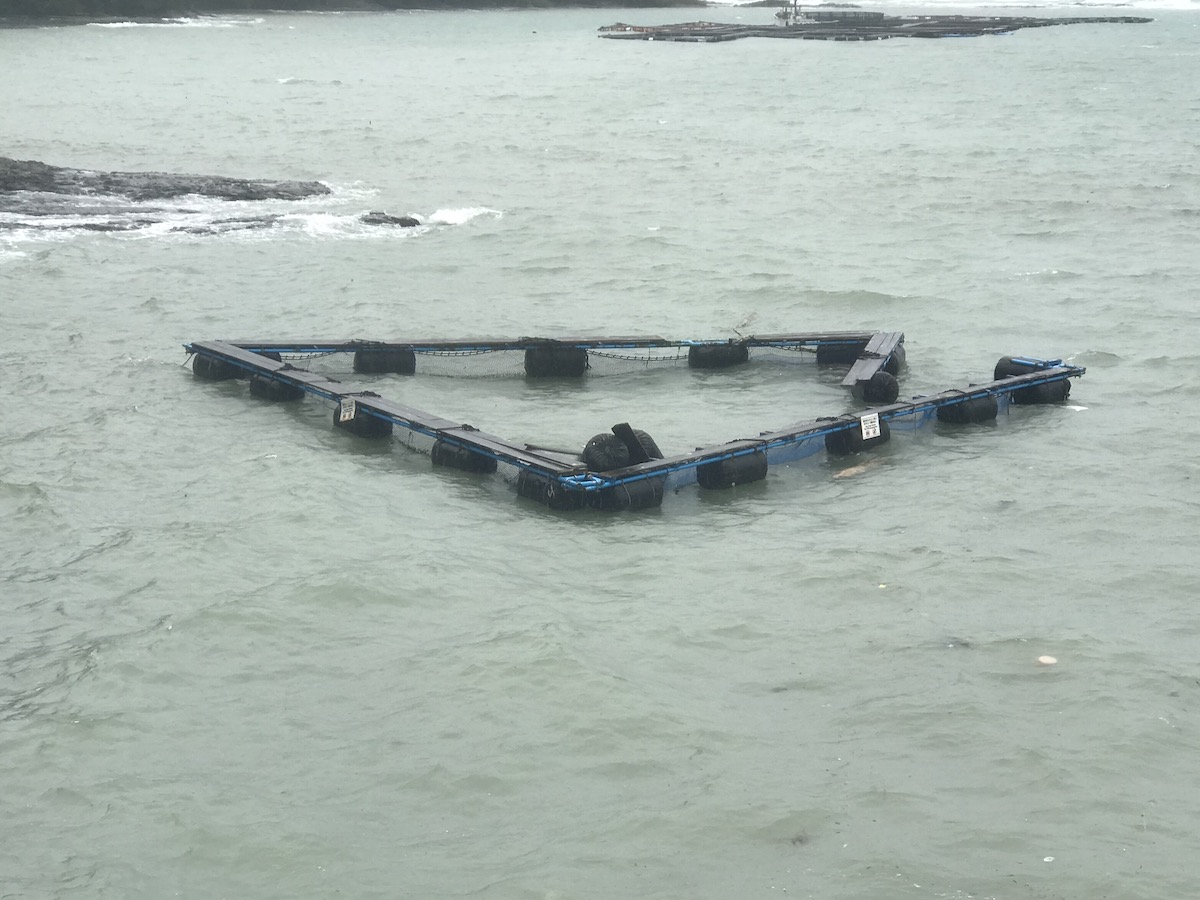 Massive destruction of dolphin pens during Typhoon Hagibis, Taiji, Japan