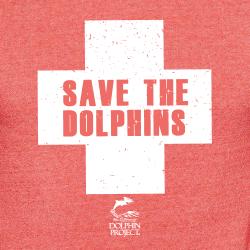 Dolphin Project Lifeguard Closeup