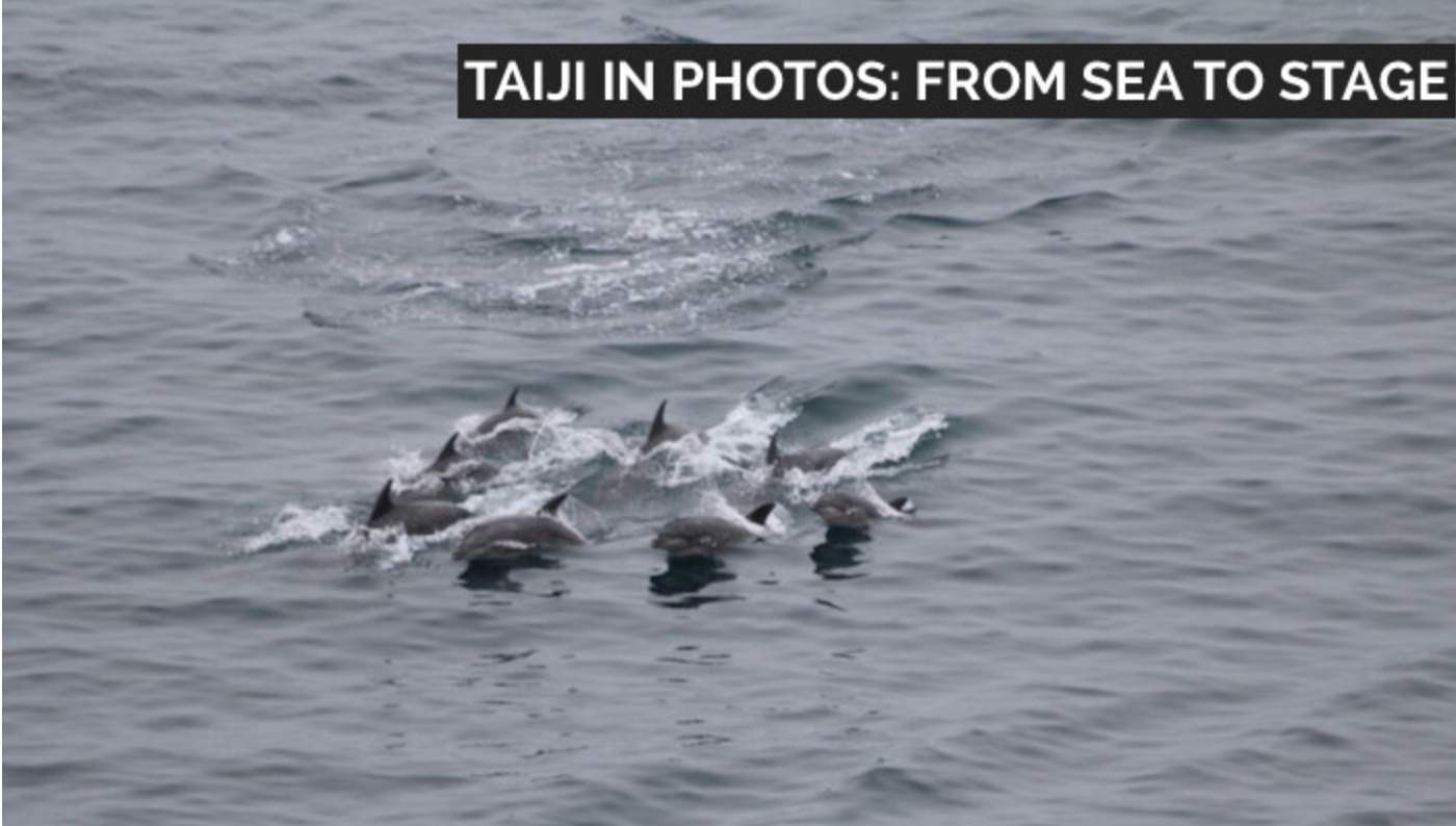 Taiji in Photos: From Sea to Stage