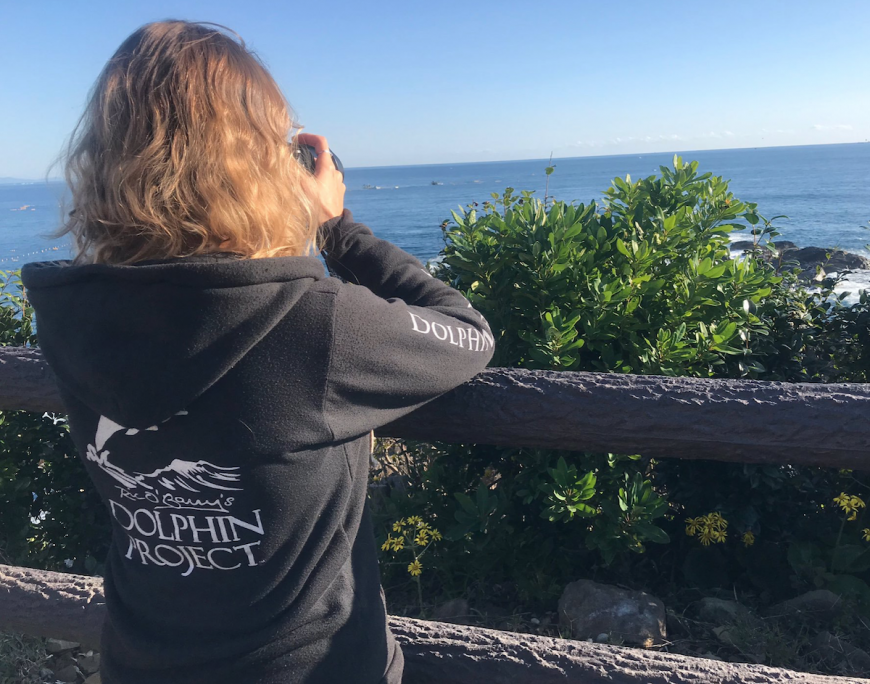 Dolphin Project Cove Monitors scan the horizon for hunting boats, Taiji, Japan