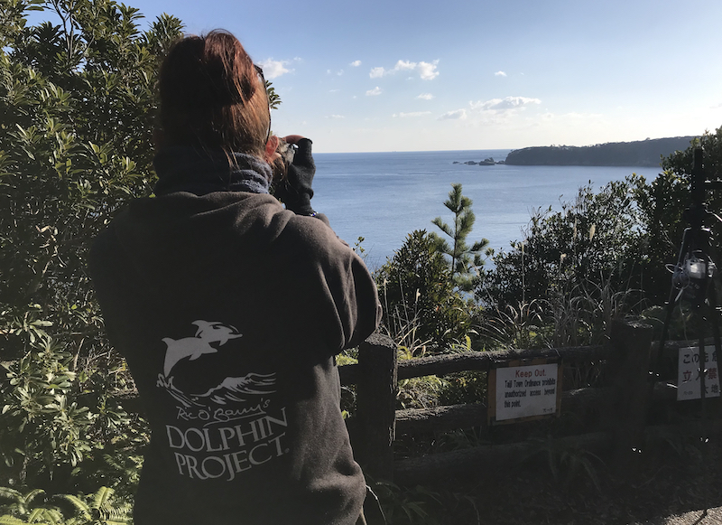 Dolphin Project Cove Monitors scan the horizon for signs of a dolphin drive, Taiji, Japan.