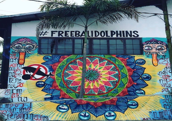 #FreeBaliDolphins