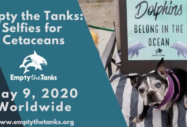 Empty the Tanks Event: Selfies for Cetaceans