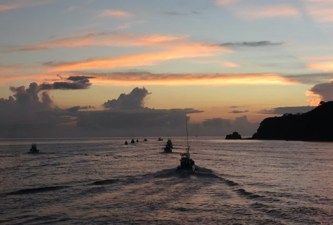 Hunting boats head out in search of dolphins on the first day of Taiji, Japan's dolphin drive hunt season.