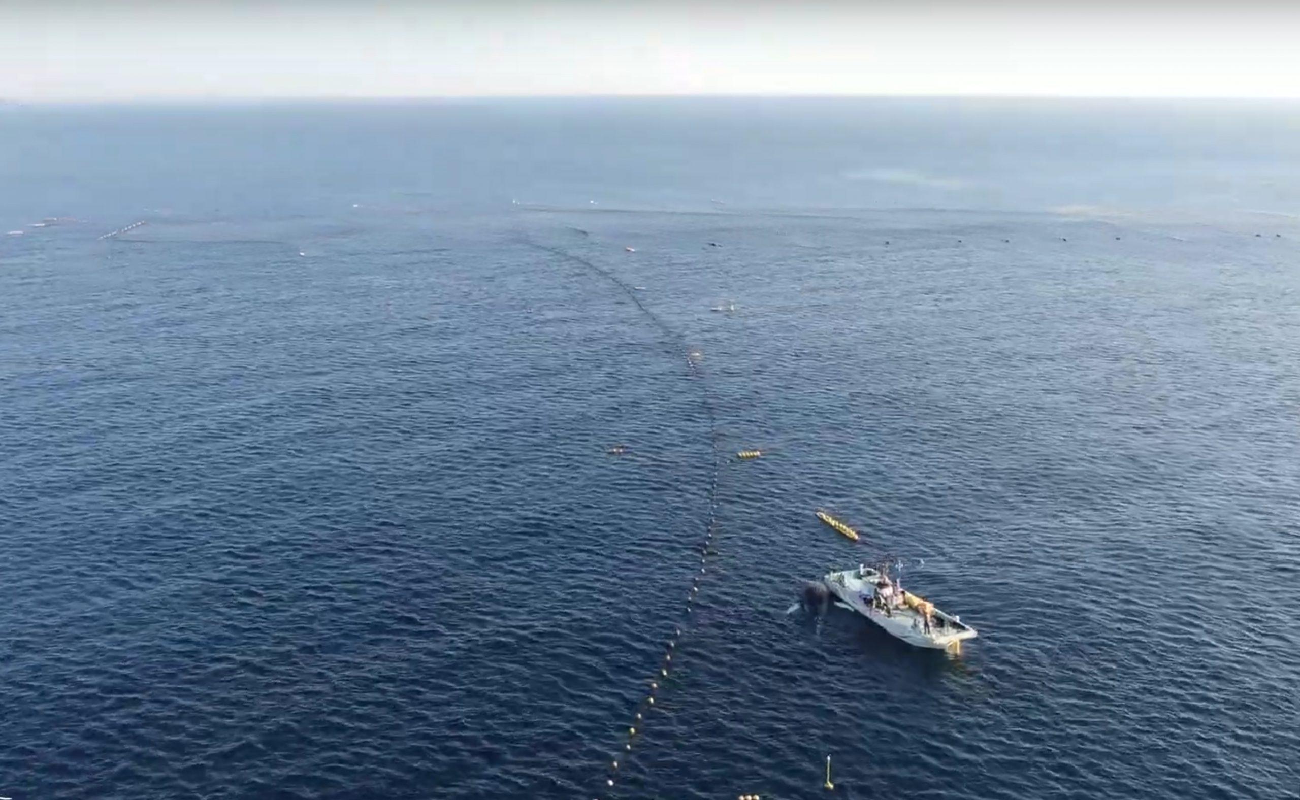 Humpback whale dies after ramming Taiji's set nets, Taiji, Japan