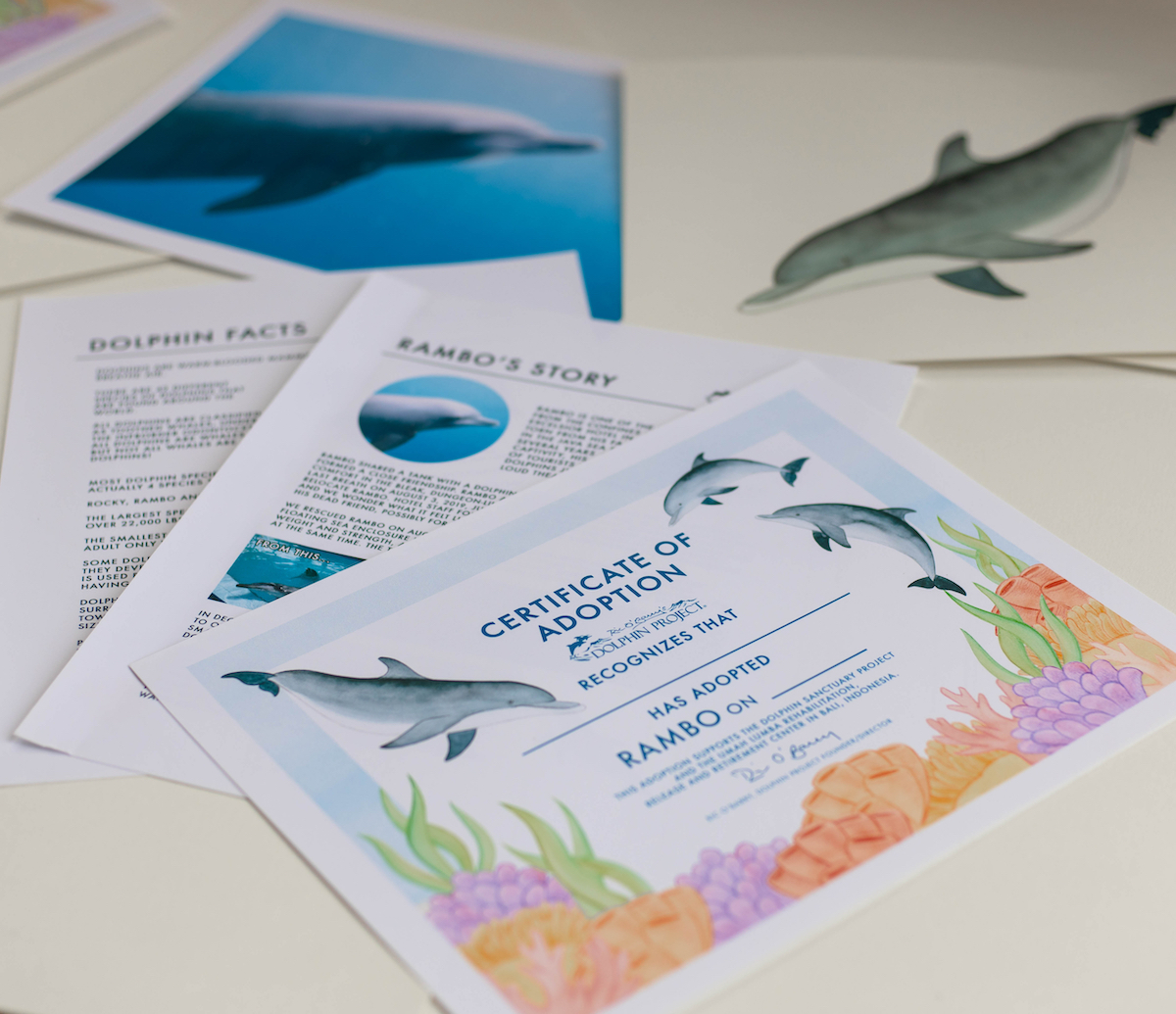 Rambo adopt a dolphin package